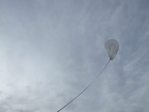 After release, the balloon still with the collar attached rise slowly (Image Courtesy: Eric Bellm)